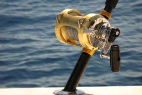 Zkušení rybáři nakupují výbavení online