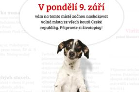 Seznam.cz spouští novou službu na hledání práce - Volná místa.cz